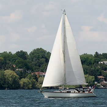 Bay Breeze (type)