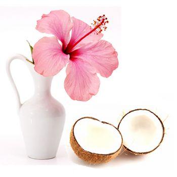 Coconut Hibiscus