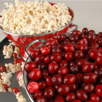 Cranberry Kettle Corn