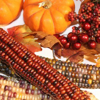 Harvest (type)