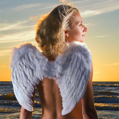 Dream Angels - Halo (type)