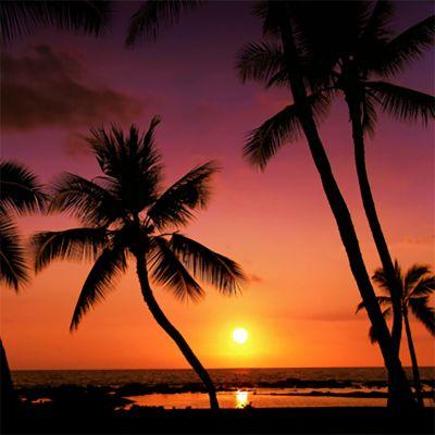 Hawaiian Blast