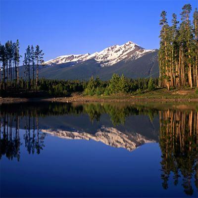 Mountain Lake (type)