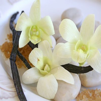 Warm Vanilla Sugar (type)